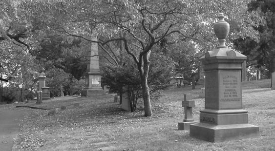 1880 image